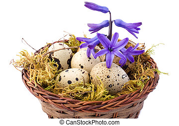 Still Life With Quail Eggs And Hyacinth