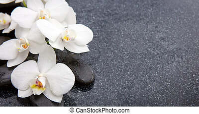 Still life with spa stones and white orchid.