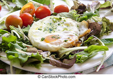 fried eggs - Still Life with vegetable salad leaves leaves ...