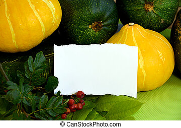 Still life with vegetables and a white leaf on the wall. Autumn greeting card for wishes. Pumpkin, zucchini, pepper, tomato, marigold flowers are on a napkin on the table.