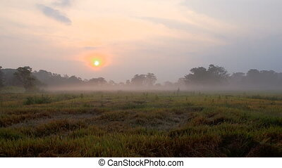 Still of morning misty sunrise