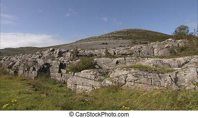 Still shot of a rocky Irish landscape peppered with green plants and grass.