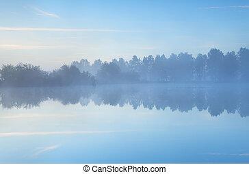 stilla, dimmig, morgon, på, insjö