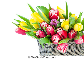 stilleben, romantisk, fostrar, trä, tulpaner, korg, dag, bakgrund., fjäder, frisk, vita blommar, lycklig