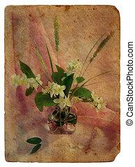 stilleven, met, jasmine., oud, postcard.