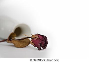 stilllife - Still life with flower near the ceramic vase on ...