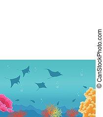 stingray, silhouette, scogliera, mare