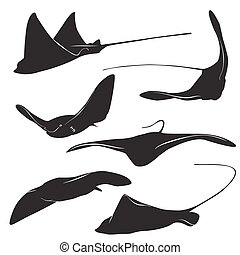 stingray vector silhouette - Set of stingray silhouette and...