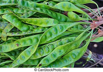 Stink Bean (Parkia speciosa) - stink bean , twisted cluster ...