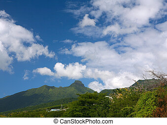 st.kitts