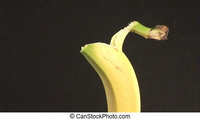 Stock Footage of a Banana - Stock Footage Time lapse of a...