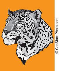 Stock Illustration - leopard