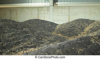 Stock or warehouse pile rapeseed or rapeseed store, oil seed...
