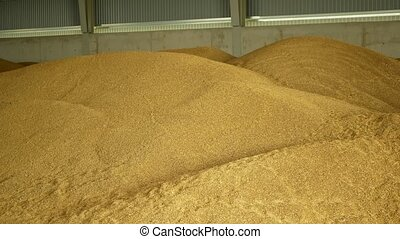 Stock or warehouse pile wheat store, barley and other...