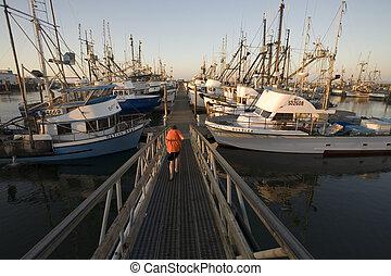 Stock Photo of the Marina in Westport, Washington - Photo of...