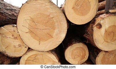 stock timber wood industry plant