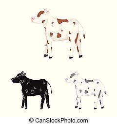 stock., vaca, novilla, objeto, símbolo., colección, aislado...