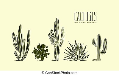 Stock vector set of hand drawn cactus. Illustration in ...