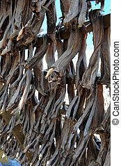 Stockfish in Norway