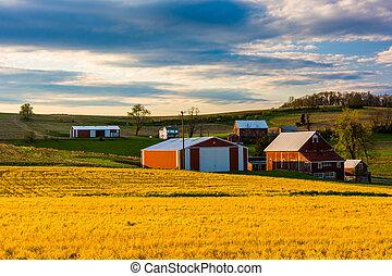 stodoły, zagroda, hrabstwo, pennsylvania., york, wiejski, czerwony
