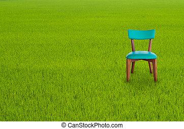 stoel, hout, groen gras