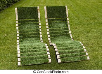 stoelen, gras, groene