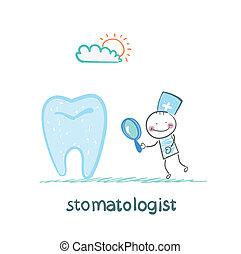 stomatologist, tand, titta glas, genom, förstorar