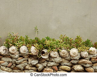 Stone and Shell Wall with Succulents