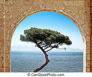 View through the stone arch on stand-alone tree on the sea background