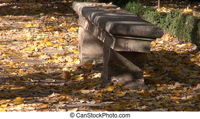 Stone benches in the autumnal park