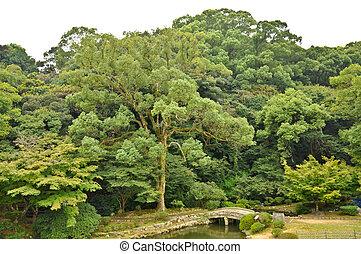 Stone bridge in Japanese garden at Isahaya, Japan