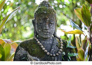 Stone Buddha in Jungle