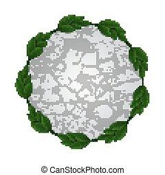 stone circle leaves frame