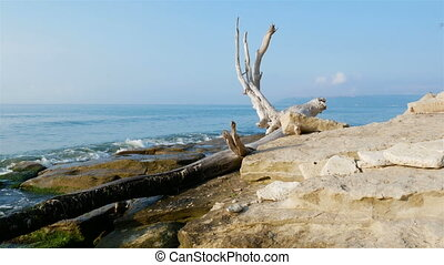 Stone Coast of the Black Sea, in summer, small waves. 4k...