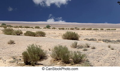 Stone desert, Jordan, Middle East - Stone desert (typical...