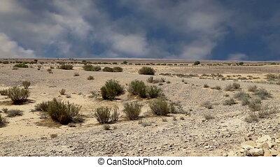 Stone desert (typical arid landscape), Jordan, Middle East