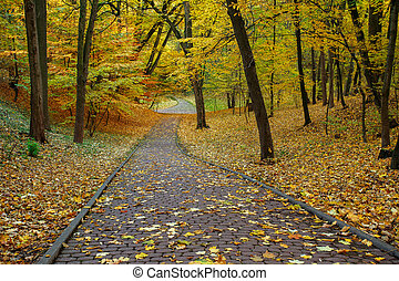 Stone footpath in the autumn city park with yellow fallen leaves