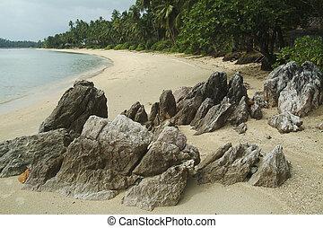 Stone in the beach.