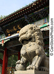 stone lions at the gate in a park