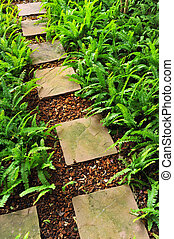 stone path in the garden