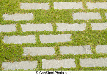 stone path with grass ,background and texture
