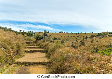 Stone Pathway in a Hills Horton Plains National Park,...