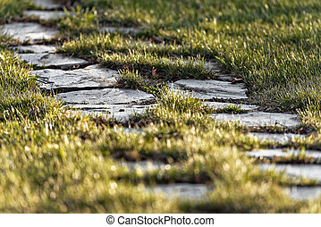 Stone pathway on green grass with short depth of field