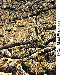 Stone Pattern - A stone pattern with water, near the sea