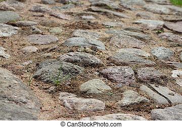 Stone pavement with moss
