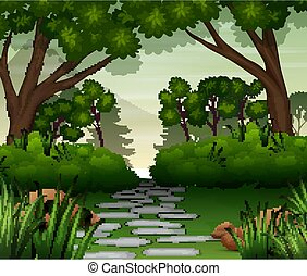 Stone road in the forest background