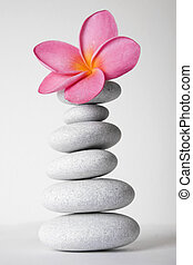 Stone Stack and Frangipani Flower - Stack of white pebbles ...
