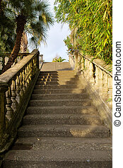 staircase in a park