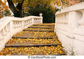 stone staircase with colorful fallen leaves autumn season
