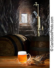 stone stairs going from a cellar